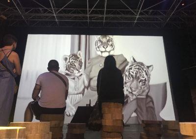 17 - Sagra del Seitan 2018 - Mostra Immersiva